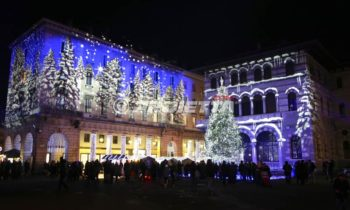 snowy forest projection in Como